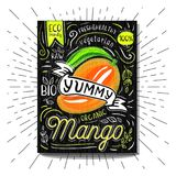 Colorful Label poster stickers food fruits vegetable chalk sketch style, food and spices. Mango ripe. Bio eco vegetarian raw farm fresh organic. Hand drawn Stock Photos