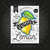 Colorful Label poster stickers food fruits vegetable chalk sketch style, food and spices. Lemon citrus. Bio eco vegetarian raw farm fresh organic. Hand drawn Stock Photography