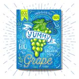 Colorful Label poster stickers food fruits vegetable chalk sketch style, food and spices. Grape green. Bio eco vegetarian raw farm fresh organic. Hand drawn Stock Photography