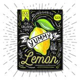 Colorful Label poster stickers food fruits vegetable chalk sketch style, food and spices. Lemon citrus. Bio eco vegetarian raw farm fresh organic. Hand drawn Royalty Free Stock Photos