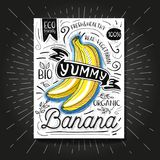 Colorful Label poster stickers food fruits vegetable chalk sketch style, food and spices. Banana. Bio eco vegetarian raw farm fresh organic. Hand drawn vector Stock Images