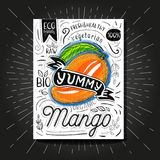 Colorful Label poster stickers food fruits vegetable chalk sketch style, food and spices. Mango ripe. Bio eco vegetarian raw farm fresh organic. Hand drawn Royalty Free Stock Image