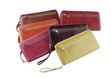 Colorful Lady Wallets Stock Photo