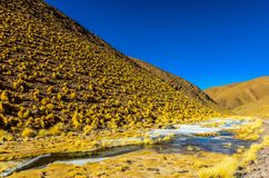 Colorful lagoon, salt peats, and the Andes mountains of Catamarca, Argentina royalty free stock photography