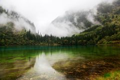 Colorful lake in Jiuzhai Valley. Beautiful lake surround by mountain with colorful trees in Jiuzhai Valley, Sichuan of China Royalty Free Stock Photos