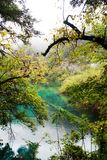 Colorful lake in Jiuzhai Valley Royalty Free Stock Photos