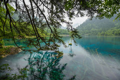 Colorful Lake of Jiuzhai Valley National Park Stock Photos