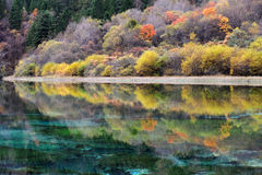 Colorful lake in Jiuzhaigou Royalty Free Stock Photos