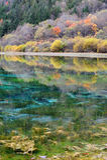 Colorful lake in Jiuzhaigou Stock Photo