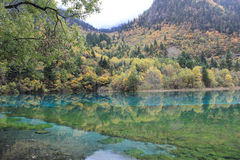 Colorful lake in Jiuzhaigou Royalty Free Stock Photography