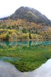 Colorful lake in Jiuzhaigou Stock Image