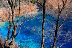 Colorful lake in Jiuzhaigou, China Royalty Free Stock Photo