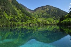 Colorful lake in Jiuzhaigou Stock Photos
