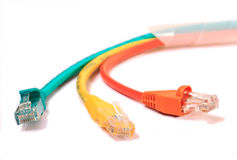 Colorful lan telecommunication cable RJ45. Isolated on white background Royalty Free Stock Photo
