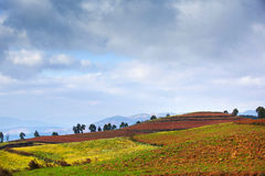 Colorful land in highland Royalty Free Stock Photography