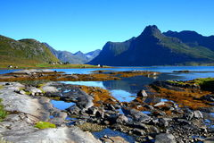 Colorful landscape. In the lofoten islands. Mountains reflections Royalty Free Stock Photos