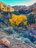 Colorful Landscape background Stock Photo