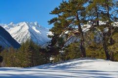 Mountains vista Stock Photography