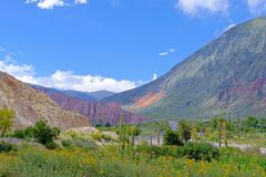 Colorful landscape at the Cuesta De Lipan canyon from Susques to Purmamarca, Jujuy, Argentina. South America stock photo
