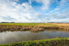 Colorful landscape of a Dutch polder in wintertime Stock Image