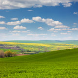 Colorful Landscape of fields in countryside,  blue sky Royalty Free Stock Images