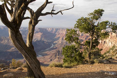 Colorful Landscape of Grand Canyon royalty free stock photo