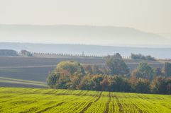 Colorful landscape in Lower Franconia with autumn mood and autumn colors in the vineyard in the morning mist stock photos