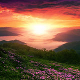 Colorful landscape in the mountains, America travel, beauty world Royalty Free Stock Photo