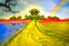 Colorful landscape Stock Image