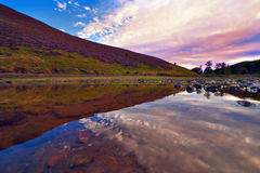 Colorful landscape scenery of Pentland hills slope covered by vi Royalty Free Stock Photos