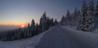 Colorful landscape at the winter sunrise in the mountain forest Stock Image