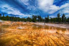 Colorful landscape in the in Yellowstone National Park Royalty Free Stock Photos