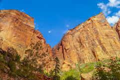 Colorful landscape from zion national park. Royalty Free Stock Photo