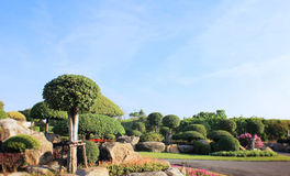 Colorful landscaped formal garden Royalty Free Stock Images