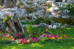 Colorful landscaped formal garden. Stock Images