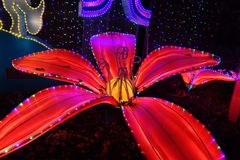 Chinese lantern festival royalty free stock photography