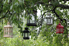 Colorful lanterns hang in the tree. Closeup picture of colorful garden lanterns hang in the tree Royalty Free Stock Image
