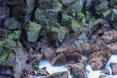Colorful lava rocks with algae near the sea Royalty Free Stock Photo