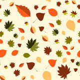 Colorful leaf background, eps10 vector Royalty Free Stock Photography