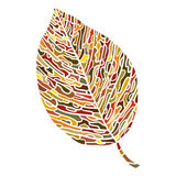 Colorful leaf isolated on white Royalty Free Stock Photos