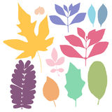 Colorful leaf set Stock Photo