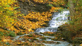 Colorful leafs next to a waterfall during autumn - Time-lapse stock video