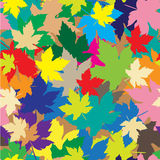 Colorful leafs on seamless background Royalty Free Stock Photography