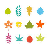 Colorful leafs Royalty Free Stock Photos