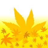 Colorful leaves. Maple leaves pattern in autumn on gradient yellow  background Royalty Free Stock Photos