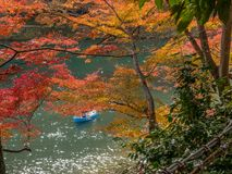 Colorful leaves along river in Arashiyama, Japan. Colorful leaves along river in autumn season in Arashiyama region, Kyoto, Japan Royalty Free Stock Photos
