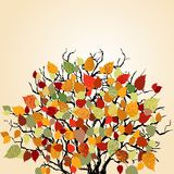 Colorful leaves background Royalty Free Stock Photo
