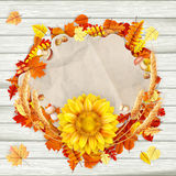 Colorful leaves background. EPS 10 Stock Photo
