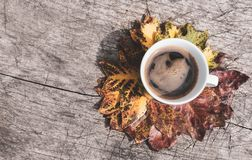 Colorful leaves in circle and a cup of coffee on wooden background royalty free stock photos