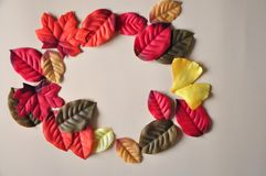 Colorful leaves in circle shape with space for text stock photo